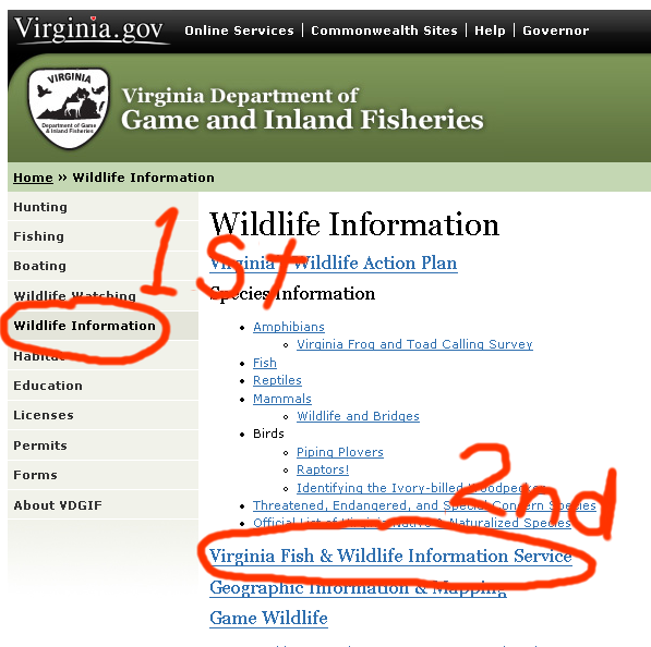 Fishing vdgif virginia department of game and inland for Virginia game and fish